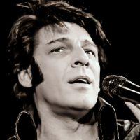 Andy Elvis Tribute